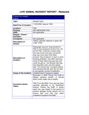 Cargo Incident Report page 2 preview