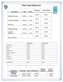 Pay stub template page 1