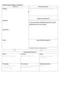 Marketing strategy template page 1 preview