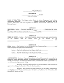 Bylaws template page 1 preview