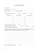 Client incident report template page 1 preview